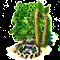 birch_upgrade_1.png