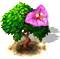 bougainvillea_upgrade_0.png