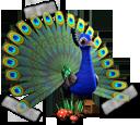 breedingmar2017_sticker277.png