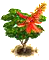 coraltree_upgrade_0.png