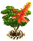 coraltree_upgrade_1.png