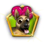 dognreeding_rune2.png