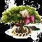 myrrh_upgrade_1.png