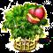 nectarine_upgrade_2.png