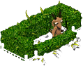 rowsalesep2021hedges_new_122.png