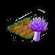 seedsearchaug2018thistlefungus.png