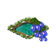 seedsearchaug2018waterberry_big.png