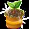 trainseedling_tree_jun18_al.png