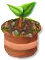 trainseedling_tree_may20_as.png